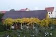 LOGO - Pod winogronami