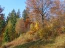 Zdjęcie 6 - Agroturystyka Na Kępie - Wisła
