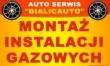LOGO - AUTO-SERWIS  BIALIC-AUTO
