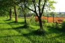 Zdjęcie 8 - Dom gościnny okolice Raszkowa
